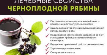 Черноплодная рябина сколько можно есть в день. Черноплодная рябина: в чем ее польза и противопоказания. Черноплодная рябина противопоказания