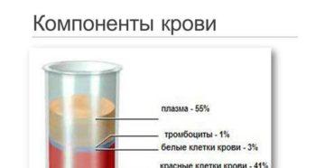 Из каких химических элементов состоит кровь. Зачем нужна кровь человеку и из каких компонентов она состоит. Основные функции эритроцитов в крови