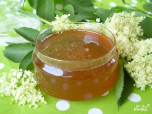 Как сварить мед из бузины в домашних условиях. Искусственный мёд