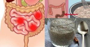 Как очистить кишечник от шлаков? Зашлакованность кишечника. Признаки и способы очищения. Очищение кишечника от шлаков и токсинов в домашних условиях